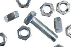 orzechy screw zdjęcie royalty free