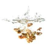 Orzechy włoscy bryzgają na wodzie, odosobnionej na białym tle Zdjęcia Stock