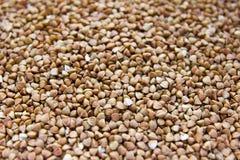 Orzo del grano saraceno Fotografia Stock Libera da Diritti