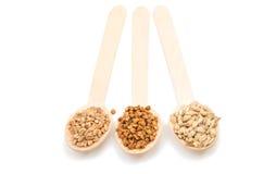 Orzo, grano, grano saraceno, chicchi dell'avena in un cucchiaio di legno isolato Immagini Stock