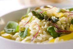 Orzo pasta salad Stock Photography