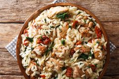 Orzo pasta salad with grilled chicken, sun-dried tomatoes, spinach, garlic and cheese close-up on a plate. horizontal top view stock photography
