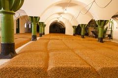 Orzo in vecchia fabbrica di birra in repubblica Ceca - aspetti per la birra Immagini Stock Libere da Diritti