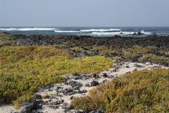 Orzola风景,兰萨罗特岛, canarias海岛 免版税库存照片
