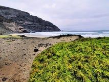 Orzola, Lanzarote stock image