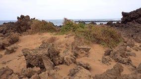 Orzola strand arkivfilmer
