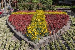 Osłona kwiatu ogród Węgry obraz stock