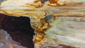 Osłupiały drewniany tło Obraz Stock