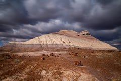 Osłupiały Lasowy park narodowy Zdjęcie Stock