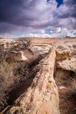 Osłupiały Lasowy park narodowy Zdjęcie Royalty Free