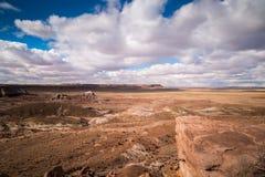 Osłupiały Lasowy park narodowy Fotografia Royalty Free
