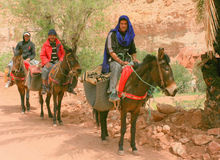 Osły i jeźdzowie Obraz Royalty Free