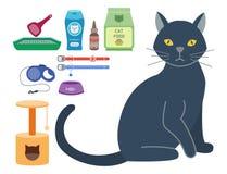 Os ícones animais do vetor bonito acessório colorido do gato pet a ilustração felino doméstica do alimento do equipamento Imagens de Stock Royalty Free
