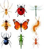 Os ícones de Ine Insects ajustaram a coleção da ilustração Foto de Stock