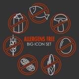 Os ícones do vetor para alérgenos livram produtos Fotografia de Stock Royalty Free