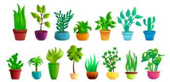 Os ícones dos Houseplants ajustaram-se, estilo dos desenhos animados ilustração stock