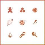 Os ícones modernos ajustaram-se da pesquisa da bioquímica, experiência do laboratório de biologia Foto de Stock