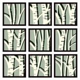 Os ícones quadrados abstratos moldaram árvores do tronco do vidoeiro Fotografia de Stock