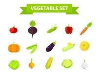 Os ícones vegetais da colheita ajustaram-se, projeto liso, arte do vetor Fotografia de Stock