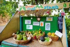 Os abacates, os limões, as bananas e outros frutos para a venda em um auto prestam serviços de manutenção ao suporte de borda da  Imagem de Stock