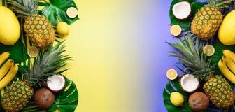 Os abacaxis exóticos, os cocos, a banana, o melão, o limão, a palma tropical e o monstera verde saem no fundo amarelo, violeta imagens de stock