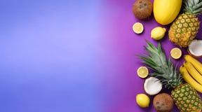 Os abacaxis exóticos, os cocos, a banana, o melão, o limão, a palma tropical e o monstera verde saem no fundo roxo, violeta foto de stock