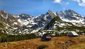 Os abrigos em Gasienicowa pastam o vale no lustrador T Imagens de Stock