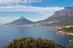 Os acampamentos latem e leões Cape Town principal África do Sul Imagem de Stock