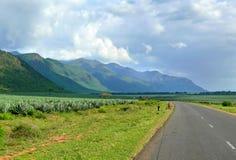 Os africanos estão na estrada. Imagem de Stock