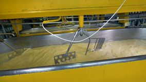 Os agitadores de aço automáticos preparam o leite para a fabricação de queijos filme