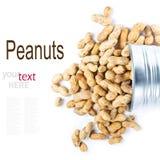 Os amendoins secados nos escudos em um metal colocam o close up (com remov fácil Fotos de Stock Royalty Free