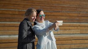 Os amigos fazem Selfie video estoque
