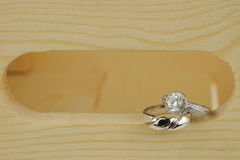Os anéis de casamento Fotografia de Stock Royalty Free