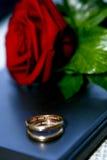 Os anéis de casamento e levantaram-se imagens de stock royalty free