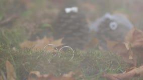 Os anéis de prata do casamento no close up macro da floresta da névoa disparam na joia do diamon vídeos de arquivo