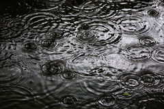 Os anéis de uma água ripple, ondinha na água fotografia de stock royalty free