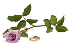 Os anéis e levantaram-se. Imagens de Stock Royalty Free