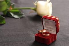 Os anéis e levantaram-se fotografia de stock