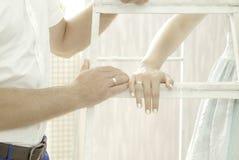 Os anéis nas mãos Fotos de Stock