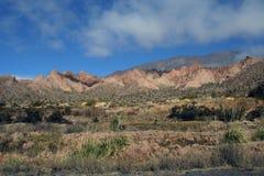 Os Andes na província de Salta, Argentina Imagem de Stock