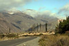 Os Andes na província de Salta, Argentina Foto de Stock Royalty Free