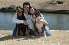 Os animais de estimação são família fotos de stock