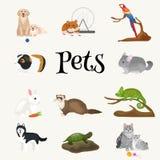 Os animais de estimação home ajustados, hamster do peixe dourado do papagaio do cão do gato, domesticaram animais Imagem de Stock Royalty Free
