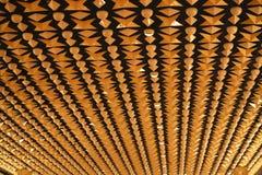 Os anos 50 projetaram o teto Imagem de Stock