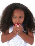 Os anos de idade completamente seis que cheiram as pétalas de Rosa Imagens de Stock