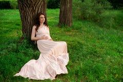 Os anos de idade de sorriso da mulher gravida 25-29 que descansam pelo lago Levantamento fora motherhood maternidade fotografia de stock