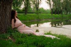Os anos de idade de sorriso da mulher gravida 25-29 que descansam pelo lago Levantamento fora motherhood maternidade imagem de stock