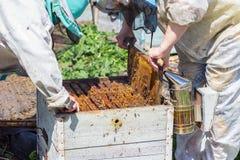 Os apicultor abrem a colmeia foto de stock