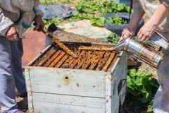 Os apicultor abrem a colmeia imagens de stock royalty free