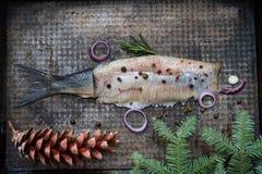 Os arenques abstratos pescam com especiarias e ornamento do Natal na vida imóvel criativa da placa de metal imagem de stock royalty free
